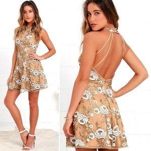 Dress the Population Abbie Beige Lace Dress S